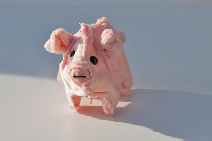 Schwein_ ⓒTanja Maria Ernst_ second-hand-Wendetier_2012